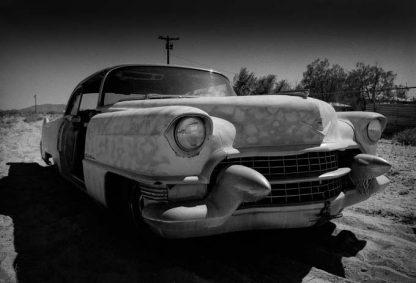 1955 cadillac desert2
